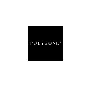 agence_lesdissidents_polygone